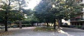 Giuseppe De Vito Piscicelli, mistero sul giovane 23enne trovato morto in casa ai Parioli : Sul petto, la strana scritta