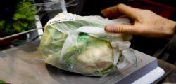 Novità Sacchetti biodegradabili per alimenti : si potranno portare da casa