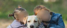 Udine, ritrovate le gemelline di 4 anni scomparse a Tarcento : Si erano perse nel bosco