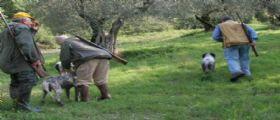 Vercelli, vanno a caccia e trovano una valigia abbandonata : All