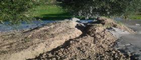 Terremoto Santa Vittoria in Matenano : La terra si apre nelle campagne