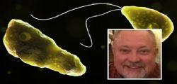 Eddie fa il bagno nel lago e muore dopo pochi giorni! Infettato da ameba mangia cervello