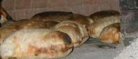 Caserta, blitz dei Nas in un panificio : Pane cotto tra le blatte e con il  legno degli infissi