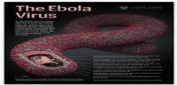 Il Vrus Ebola spaventa New York : Medico positivo ricoverato al Bellevue