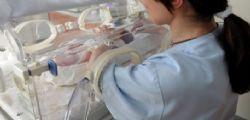 Venezia : Neonato ritrovato vivo in un cassonetto