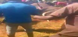 Kenya, abitanti di un villaggio massacrano con un machete un elefante intrappolato