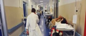 Bologna : bimba di 10 mesi intossicata da cannabis