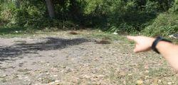 Donna bruciata a San Donnino : preso presunto omicida