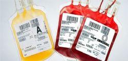 Un suicidio assistito! Testimone di Geova rifiuta trasfusione e muore