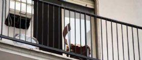 Torino : Tenta di accoltellare un