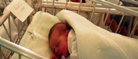 Il Bonus Bebè raddoppia : Fino a 320 euro per il primo figlio, 240 per il secondo
