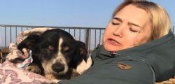 Il cane Dik muore e viene sepolto! Dopo 2 giorni scava e torna dai padroni