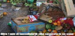 Sprechi : Ogni anno 565miliardi di euro di cibo finiscono nella spazzatura!