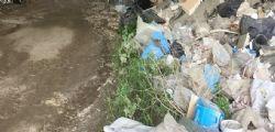 Roma : 44enne stuprata da quattro indiani in una Panda
