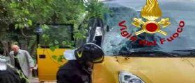 Albero crolla su uno scuolabus a Roma : Feriti l