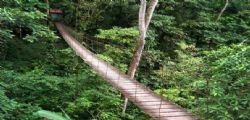 Cede ponte sospeso in Colombia : 11 morti