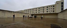 Bollate : Detenuto serbo condannato per violenza sessuale evade dal carcere