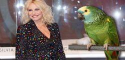 Mi vuoi sposare! La proposta a Antonella Clerici a Portobello... è successo su Rai 1