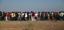 Foggia : Due poliziotti aggrediti da 50 migranti