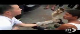 Neonato gettato nel water appena nato : Adrian Mutu vuole adottarlo