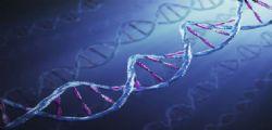 Geni : nuova tecnica mappatura Dna umano