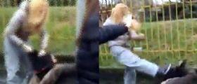 Vigevano | La piccola vittima scrive alle sue bulle : Vi ho sconfitto, non ho paura