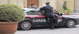Mafia, blitz dei carabinieri a Palermo : Business della marijuna per le casse di Cosa Nostra.