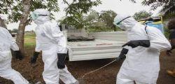 Virus Ebola | Morti 50 operatori sanitari : L