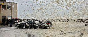 Maltempo : Centinaia di voli cancellati - Neve e vento, la tempesta Eleanor spazza via l