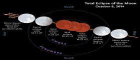 Tetrads e Selenelion: in arrivo la seconda eclissi totale di Luna
