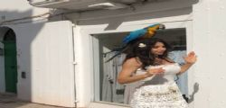 Roba da pazzi! Carmen Di Pietro passeggia con un pappagallo in testa