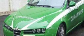Auto verdi con la scritta carabinieri : nuovo prototipo di automobile