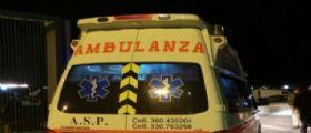 Lecce : 34enne morso da vedova nera ricoverato in ospedale