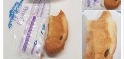 Trova uno scarafaggio nel cornetto Bauli : Ho denunciato tutto ai Nas