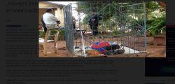 Richard Valdez : il ragazzo disabile che viveva in una gabbia