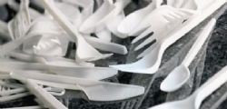 Dovremo rinunciare a cotton fioc e posate di plastica?
