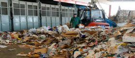 Ancona, il neonato trovato morto sul rullo dei rifiuti : Forse è una bambina