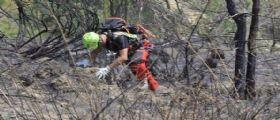 Genova  : Il 68enne Albano Crocco va a funghi ma viene trovato decapitato