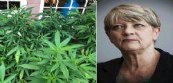 Piante cannabis : La radicale Rita Bernardini in caserma