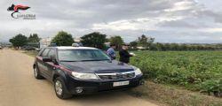 Caporalato : Arresto imprenditore a Cosenza