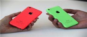 iPhone 5C : Da Domani in Germania la versione da 8GB