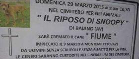 Baiano, Avellino : Manifesti funebri e cerimonia per il cane Fiume impiccato