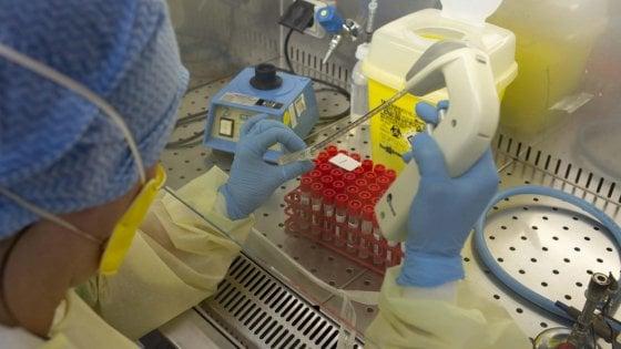 Coronavirus, attacco al laboratorio per i test del San Camillo: doveva aprire oggi.