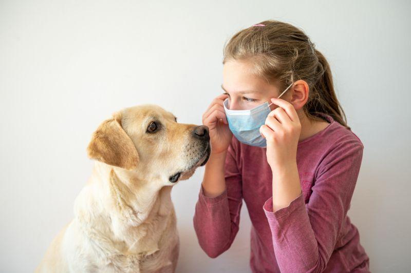 Covid-19 : I cani possono individuare l