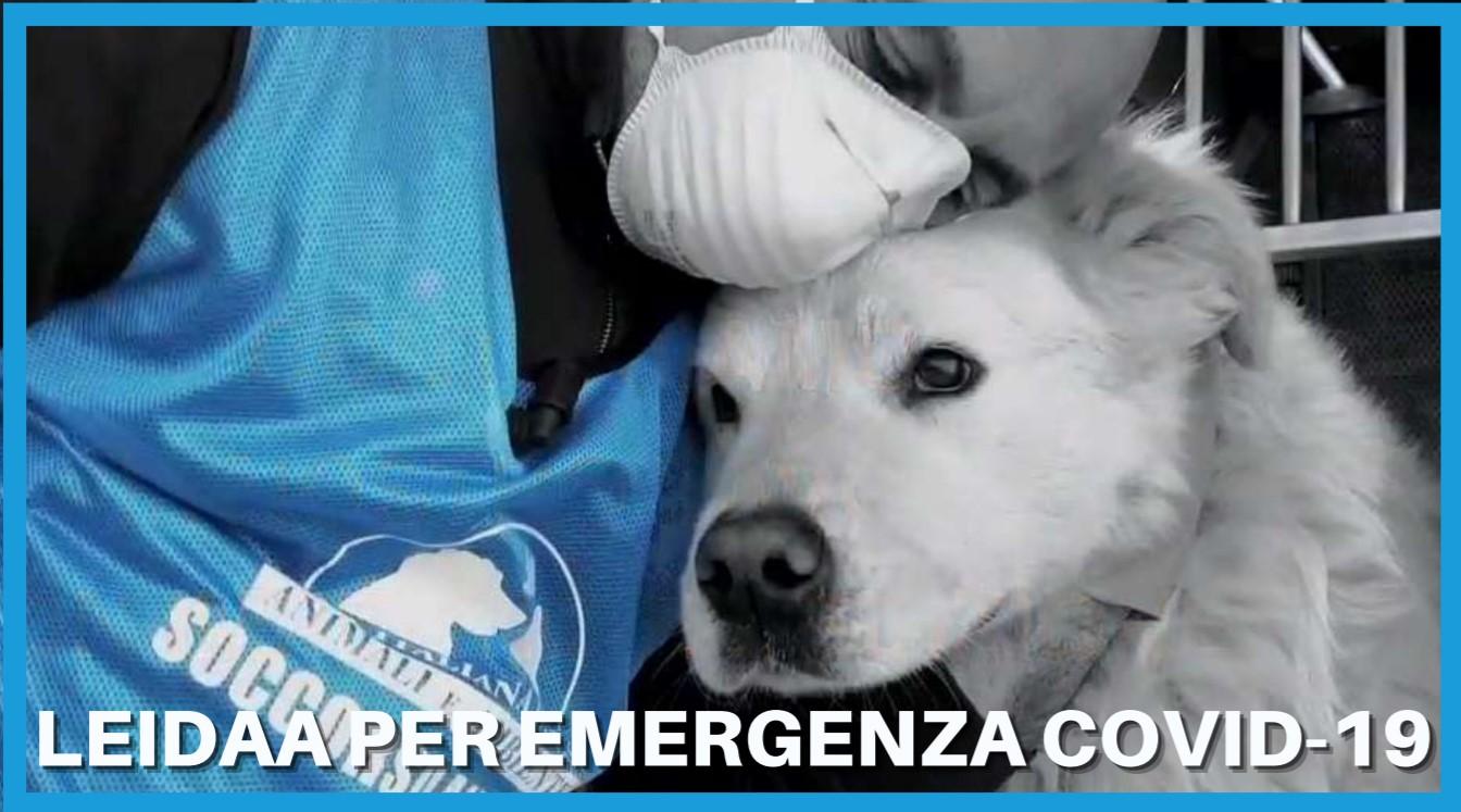 LEIDAA per emergenza Covid-19 : torna a pieno ritmo l?iniziativa per aiutare gli animali delle famiglie colpite dalla malattia